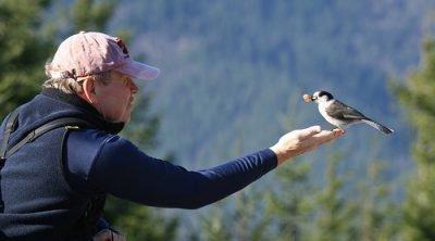 Человек и птица