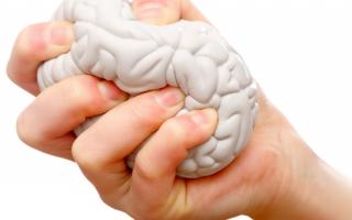 Каково влияние стресса на организм